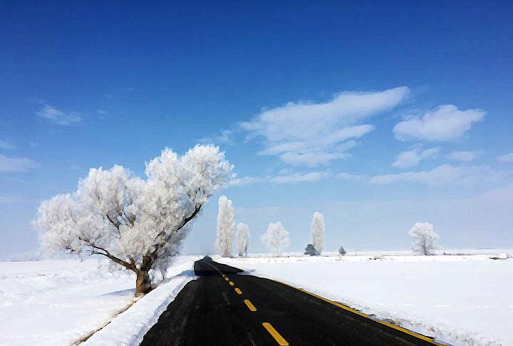Erzurum'da Kış ve Mükemmel Kareler