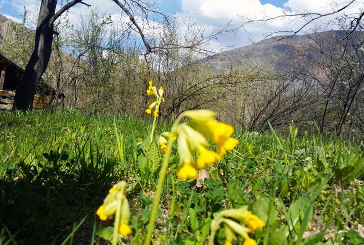 Erzurum'da Baharın Tadını Çıkarmanın 10 Muhteşem Yolu!