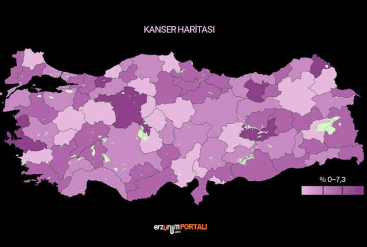 Erzurum Kanser Haritası