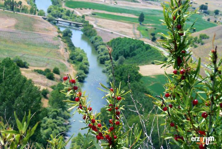 Karasu Nehri