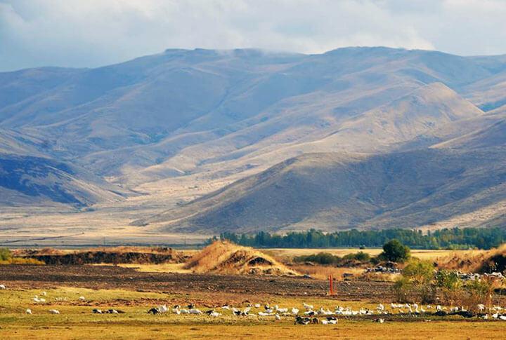Erzurum Aşkale Ziravank Harabeleri