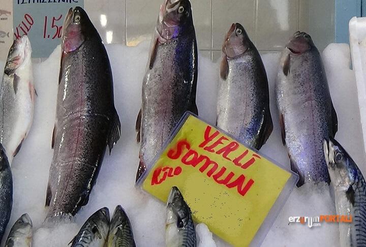 Erzurum'da Balık Sezonu Açıldı