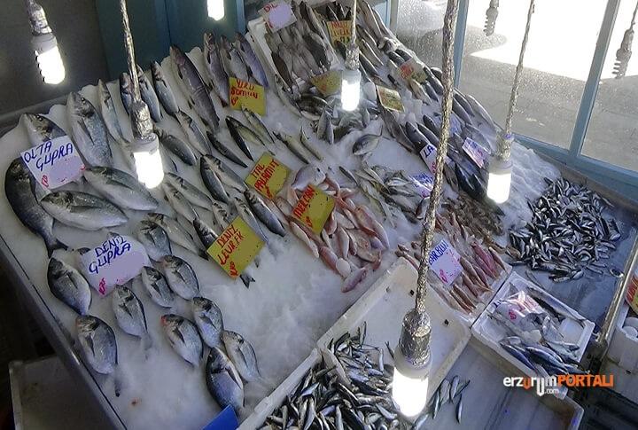 Balık Hakkında Doğru Bildiğimiz Yanlışlar!
