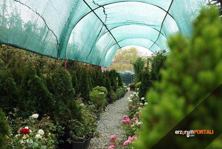 Erzurum'da 2018'in En İyi Peyzaj ve Fidancılık İşletmesi!